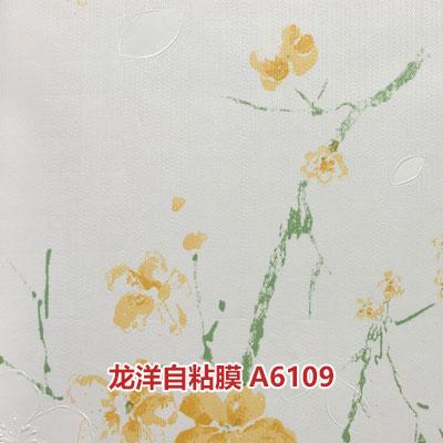 龙洋自粘膜A6109